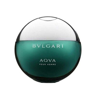 Aqua Pour Homme Erkek Parfüm Edt Vapo 100 ml