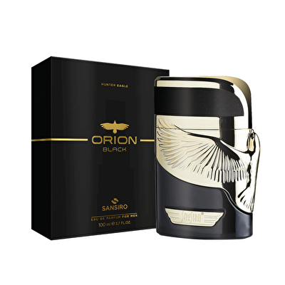 Orion Black Erkek Edt 100  ml